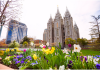 Things to Do with Out of Town Guests in Salt Lake City
