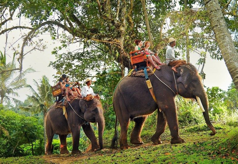 Unmissable Experiences in Thailand