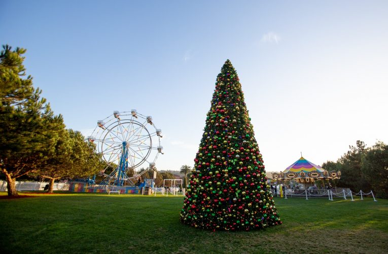 Things to Do for Christmas Party Ideas in San Diego California