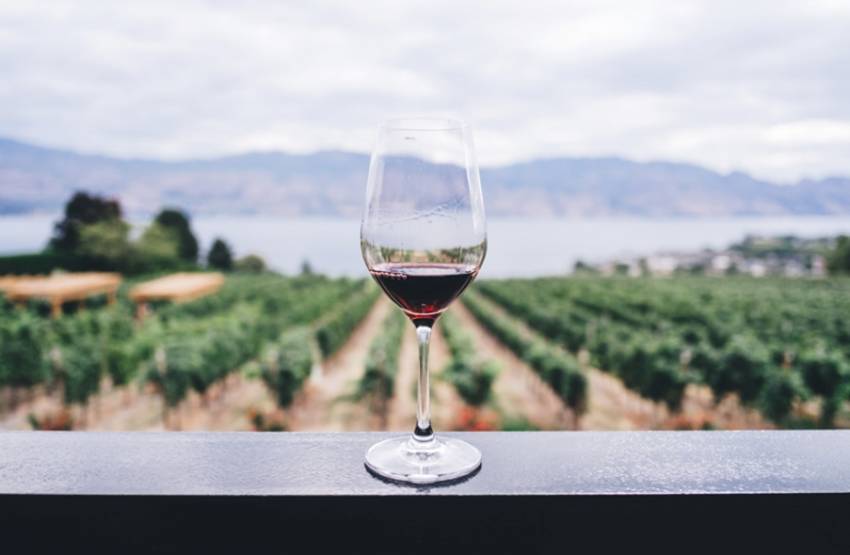 7 Awesome Reasons for Going on a Wine Tour